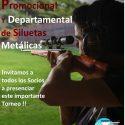 Competencia Promocional y Departamental de Siluetas Metálicas